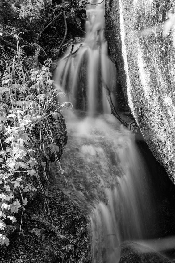 Small Waterfall- Lone Pine Creek